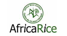 Africa Rice Center