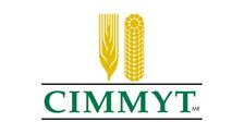 Centro Internacional de Mejoramiento de Maiz y Trigo