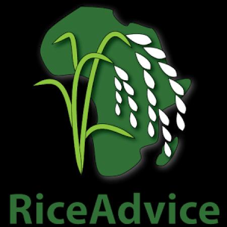 AfricaRice - RiceAdvice